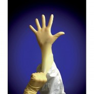 "GLOVE LATEX 9"" POWDER FREE LARGE"